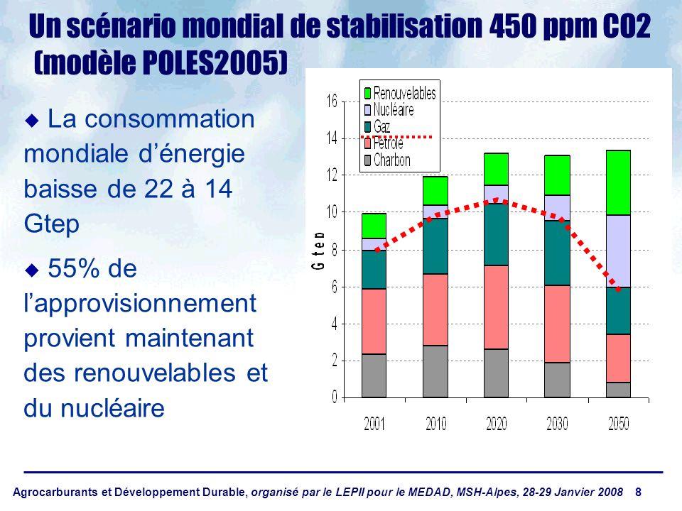 Agrocarburants et Développement Durable, organisé par le LEPII pour le MEDAD, MSH-Alpes, 28-29 Janvier 2008 8 Un scénario mondial de stabilisation 450 ppm CO2 (modèle POLES2005) u La consommation mondiale dénergie baisse de 22 à 14 Gtep u 55% de lapprovisionnement provient maintenant des renouvelables et du nucléaire