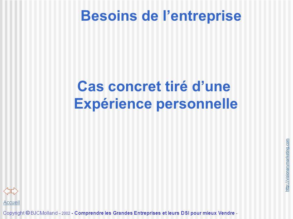http://visionarymarketing.com Copyright BJCMolland – 2002 - Comprendre les Grandes Entreprises et leurs DSI pour mieux Vendre - Accueil Besoins de len