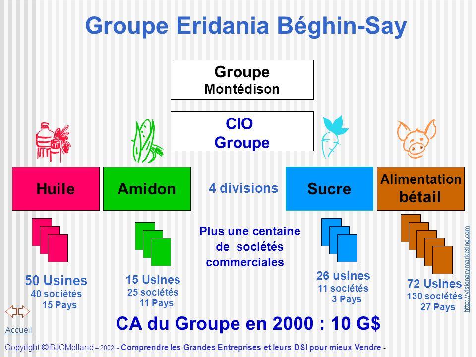 http://visionarymarketing.com Copyright BJCMolland – 2002 - Comprendre les Grandes Entreprises et leurs DSI pour mieux Vendre - Accueil Groupe Eridani