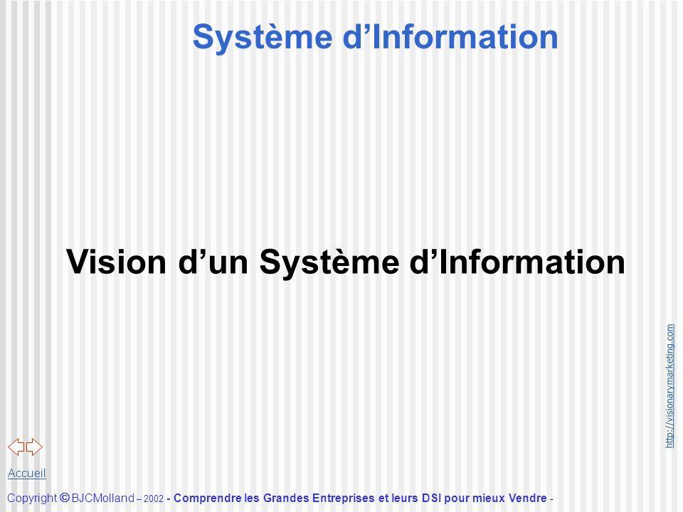 http://visionarymarketing.com Copyright BJCMolland – 2002 - Comprendre les Grandes Entreprises et leurs DSI pour mieux Vendre - Accueil Système dInfor