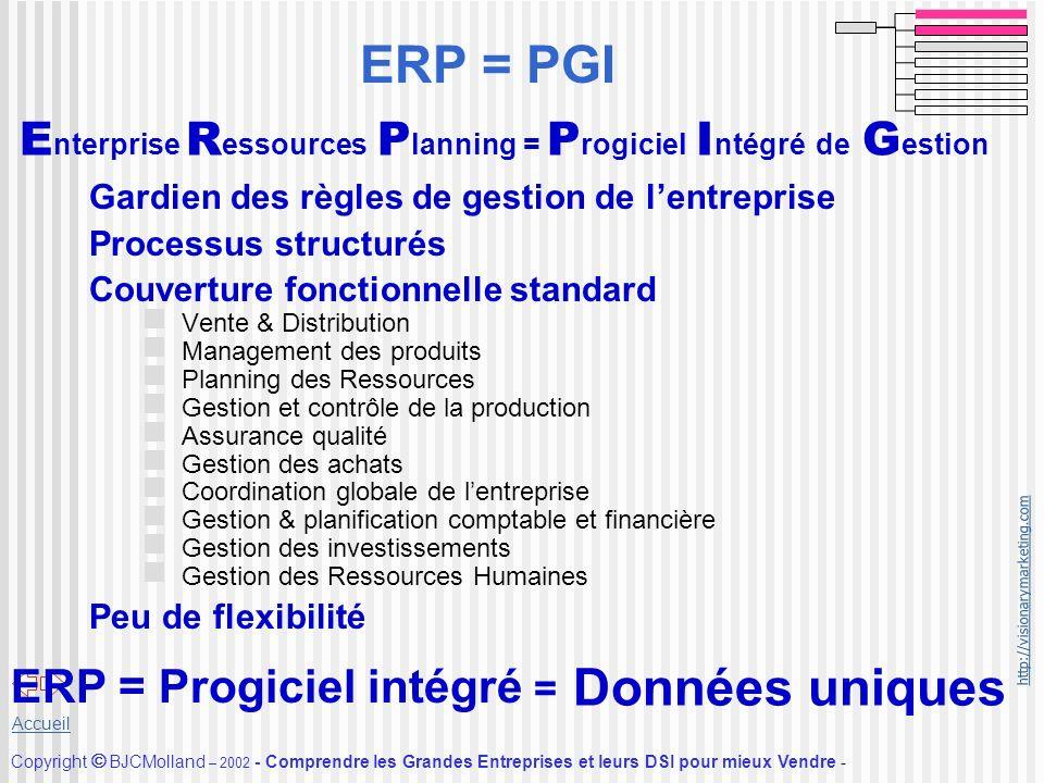 http://visionarymarketing.com Copyright BJCMolland – 2002 - Comprendre les Grandes Entreprises et leurs DSI pour mieux Vendre - Accueil ERP = PGI Gard