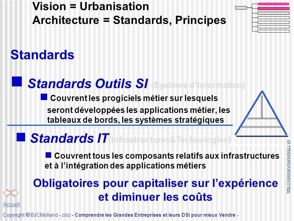 http://visionarymarketing.com Copyright BJCMolland – 2002 - Comprendre les Grandes Entreprises et leurs DSI pour mieux Vendre - Accueil Standards Outi