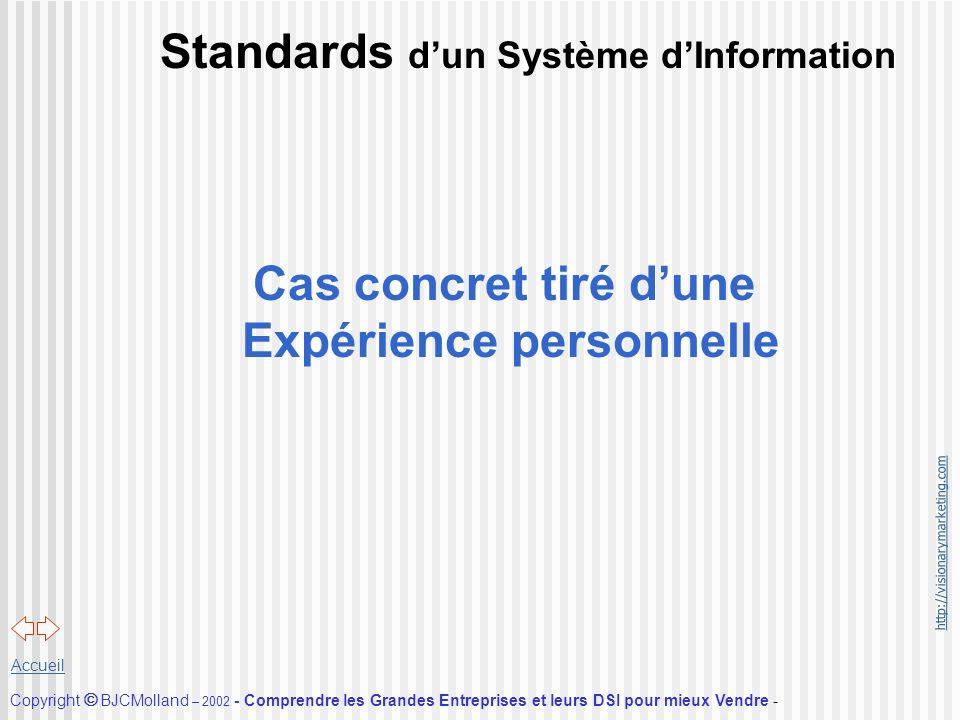 http://visionarymarketing.com Copyright BJCMolland – 2002 - Comprendre les Grandes Entreprises et leurs DSI pour mieux Vendre - Accueil Standards dun