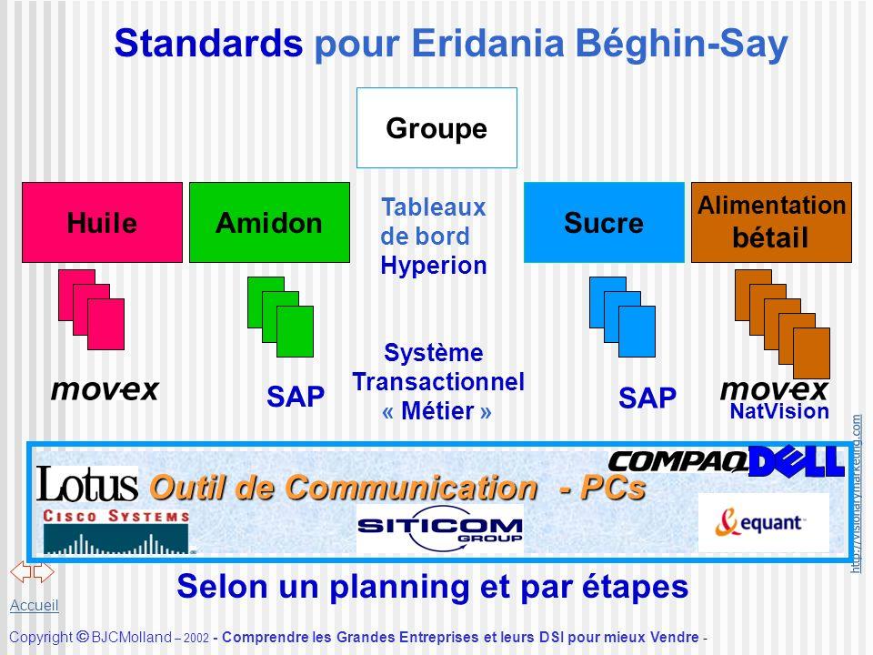 http://visionarymarketing.com Copyright BJCMolland – 2002 - Comprendre les Grandes Entreprises et leurs DSI pour mieux Vendre - Accueil Standards pour