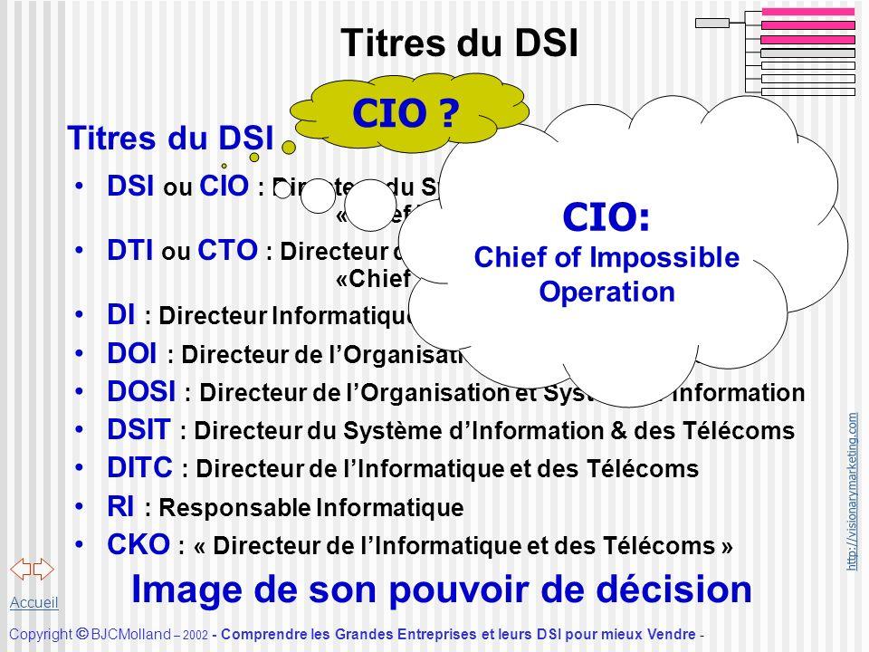 http://visionarymarketing.com Copyright BJCMolland – 2002 - Comprendre les Grandes Entreprises et leurs DSI pour mieux Vendre - Accueil Titres du DSI