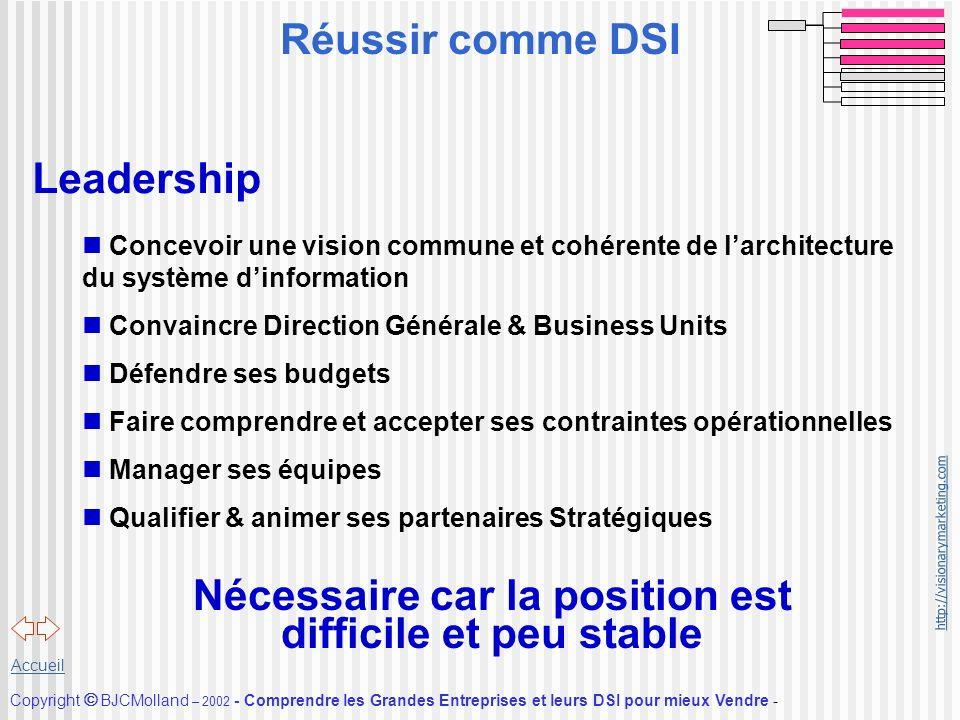 http://visionarymarketing.com Copyright BJCMolland – 2002 - Comprendre les Grandes Entreprises et leurs DSI pour mieux Vendre - Accueil Leadership n C
