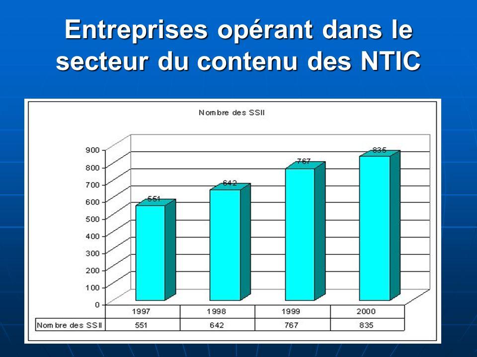 Entreprises opérant dans le secteur du contenu des NTIC