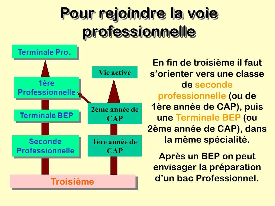 La voie professionnelle La voie professionnelle Objectifs Préparer, en deux ans: Un BEP (Brevet d Études Professionnelles) Avec un BEP on peut envisag