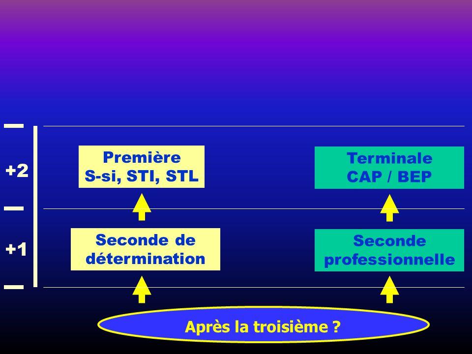 Après la troisième ? Seconde de détermination Première S-si, STI, STL Seconde professionnelle Terminale CAP / BEP +1 +2