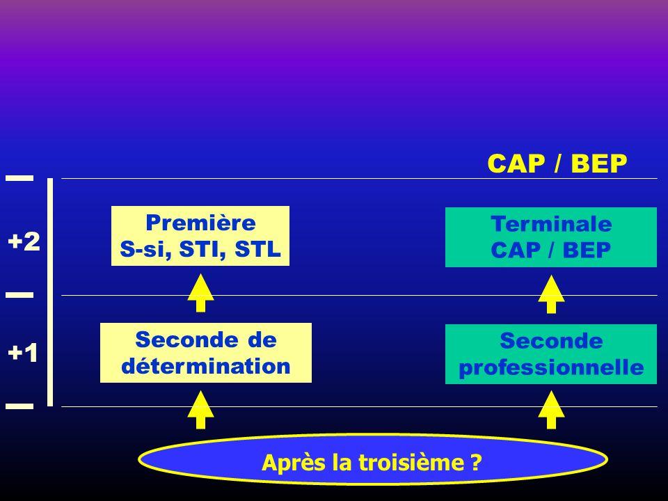 Après la troisième ? CAP / BEP Seconde de détermination Seconde professionnelle Terminale CAP / BEP +1 +2 Première S-si, STI, STL
