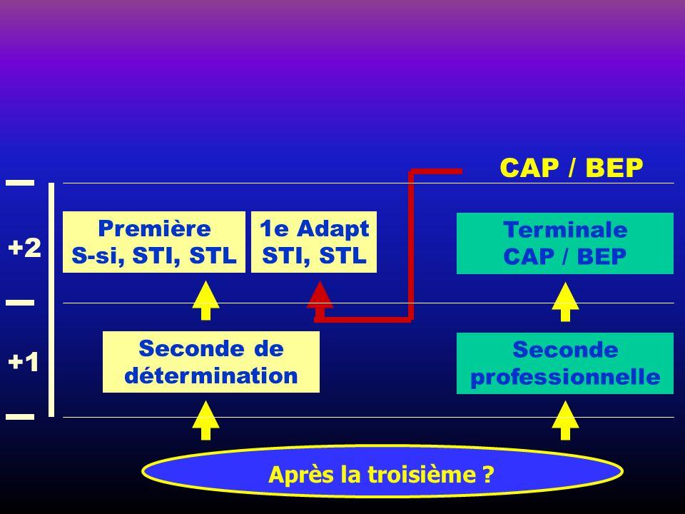 Après la troisième ? CAP / BEP Seconde de détermination Première S-si, STI, STL Seconde professionnelle Terminale CAP / BEP 1e Adapt STI, STL +1 +2
