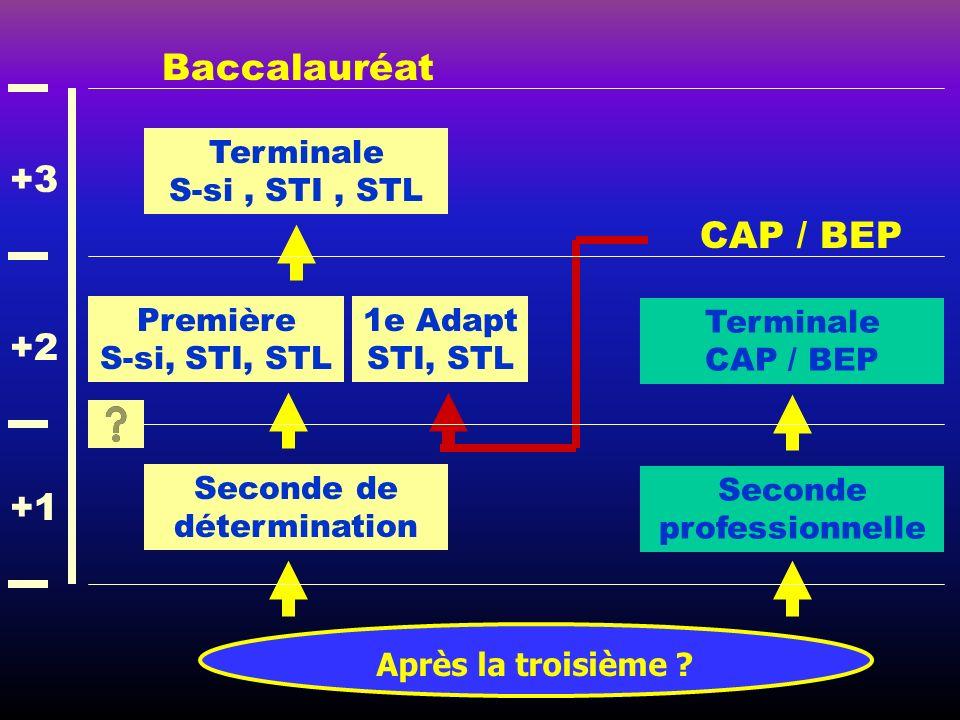 Après la troisième ? Baccalauréat CAP / BEP Seconde de détermination Première S-si, STI, STL Terminale S-si, STI, STL Seconde professionnelle Terminal