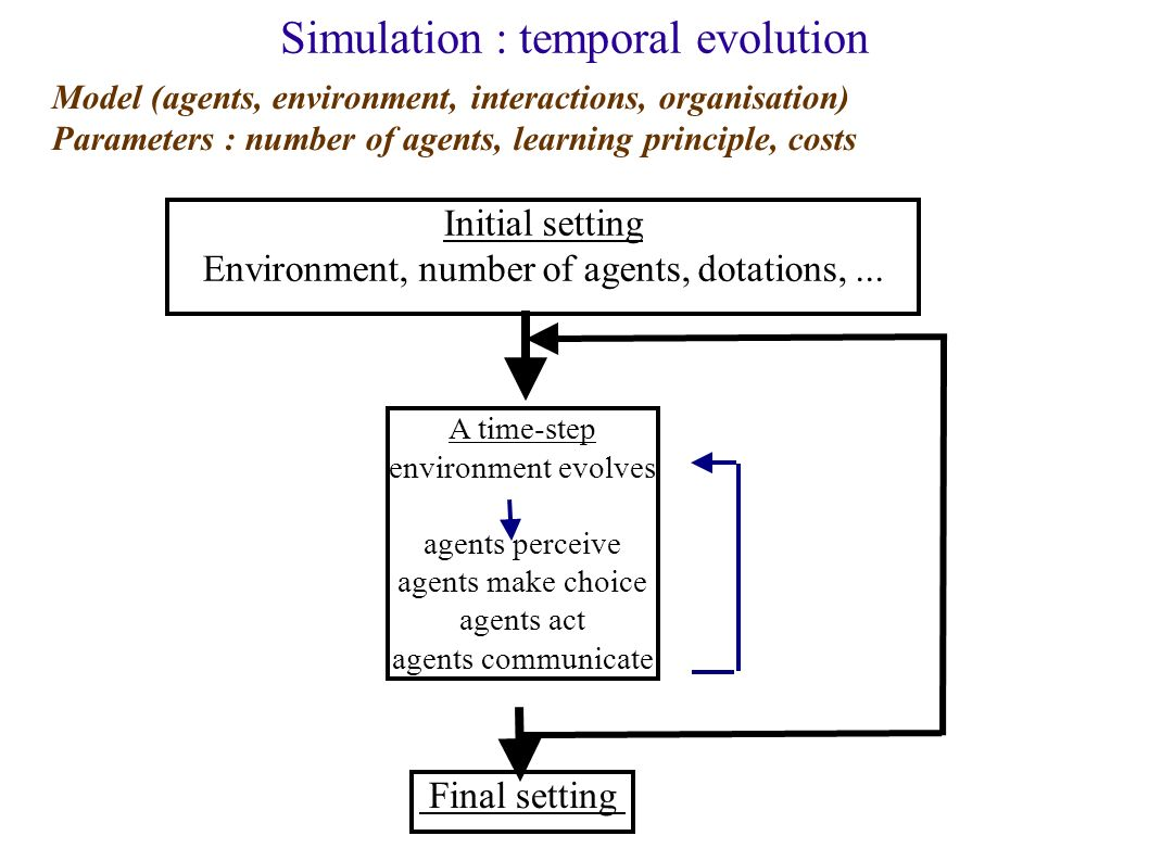 Simulation : temporal evolution Initial setting Environment, number of agents, dotations,... A time-step environment evolves agents perceive agents ma