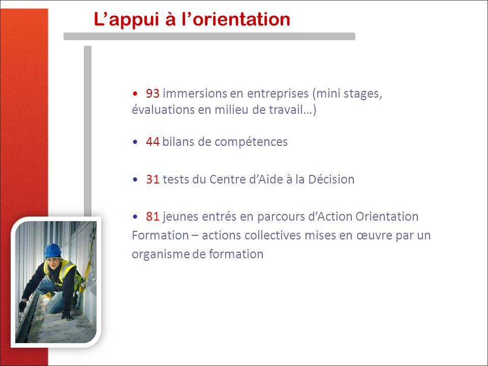 Lappui à lorientation 93 immersions en entreprises (mini stages, évaluations en milieu de travail…) 44 bilans de compétences 31 tests du Centre dAide
