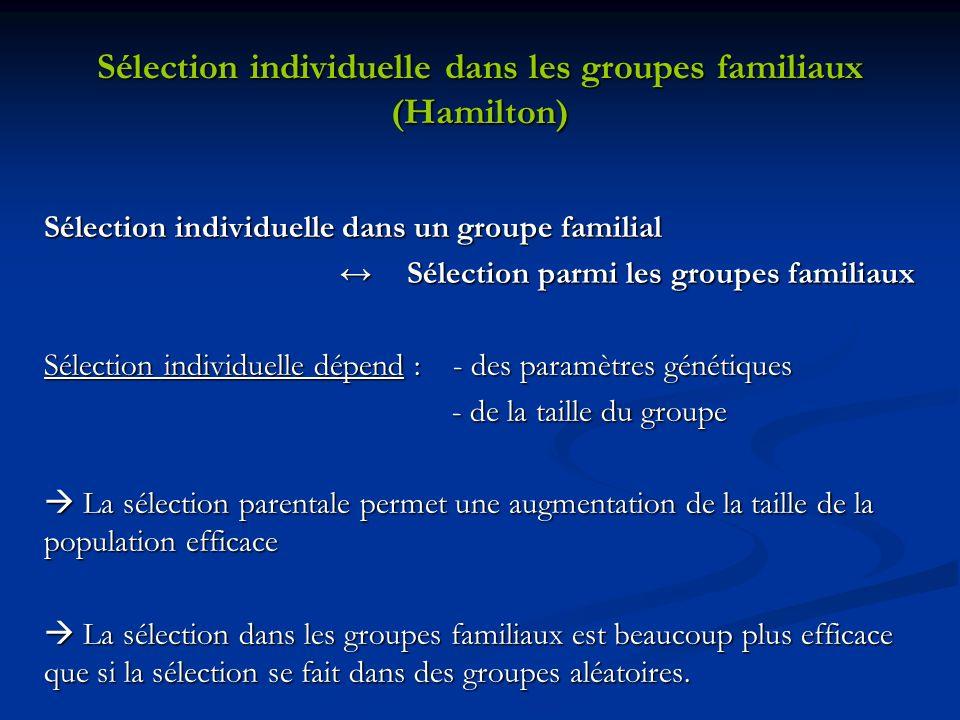 Sélection individuelle dans les groupes familiaux (Hamilton) Sélection individuelle dans un groupe familial Sélection parmi les groupes familiaux Séle