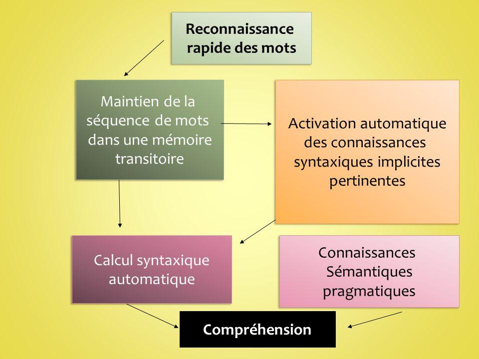 Reconnaissance rapide des mots Reconnaissance rapide des mots Maintien de la séquence de mots dans une mémoire transitoire Maintien de la séquence de mots dans une mémoire transitoire Activation automatique des connaissances syntaxiques implicites pertinentes Activation automatique des connaissances syntaxiques implicites pertinentes Calcul syntaxique automatique Calcul syntaxique automatique Connaissances Sémantiques pragmatiques Connaissances Sémantiques pragmatiques Compréhension