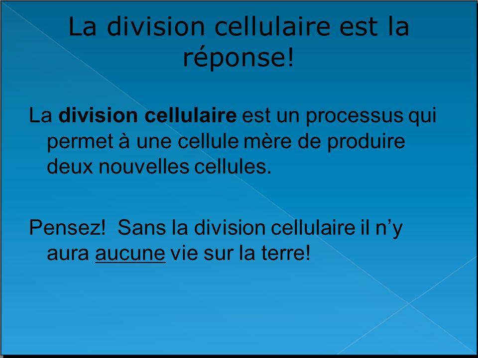La division cellulaire est la réponse! La division cellulaire est un processus qui permet à une cellule mère de produire deux nouvelles cellules. Pens