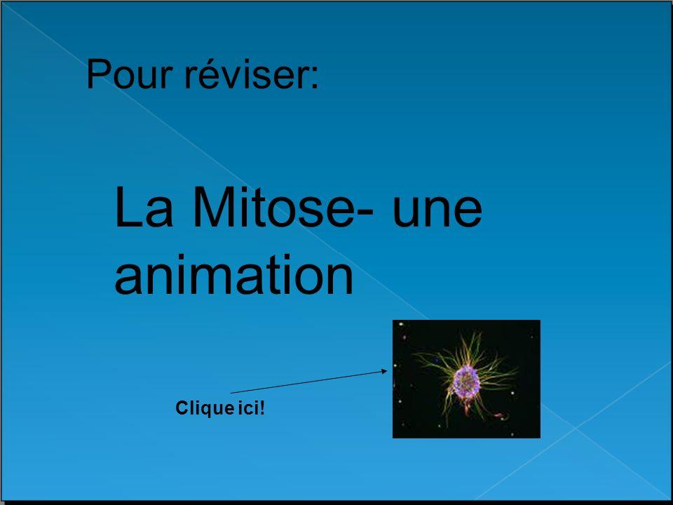 Pour réviser: La Mitose- une animation Clique ici!
