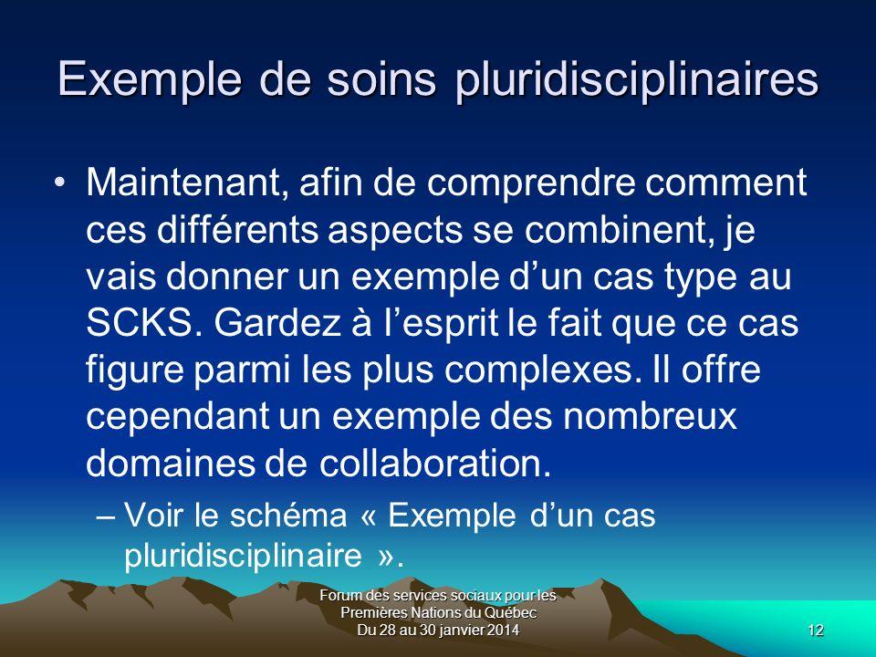 Forum des services sociaux pour les Premières Nations du Québec Du 28 au 30 janvier 201412 Exemple de soins pluridisciplinaires Maintenant, afin de comprendre comment ces différents aspects se combinent, je vais donner un exemple dun cas type au SCKS.