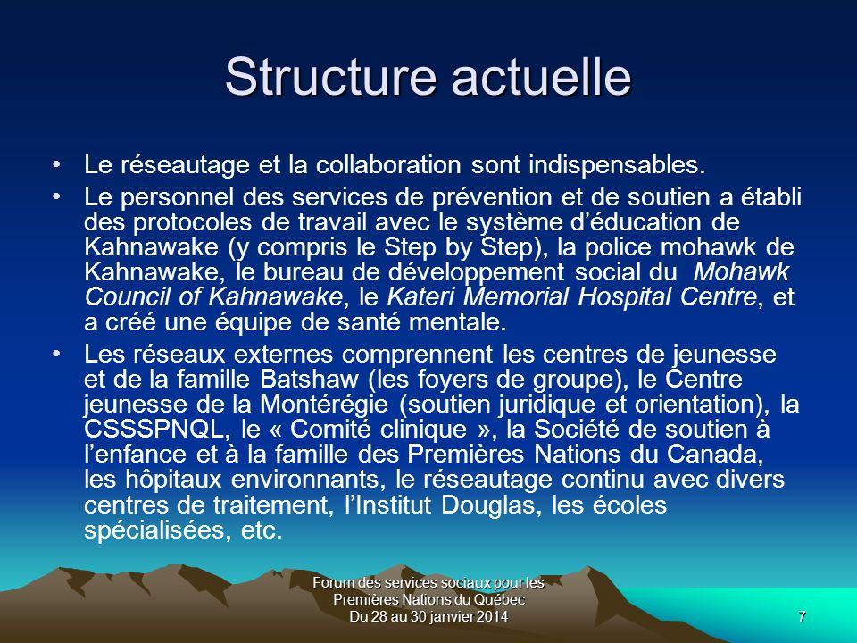Forum des services sociaux pour les Premières Nations du Québec Du 28 au 30 janvier 20147 Structure actuelle Le réseautage et la collaboration sont indispensables.