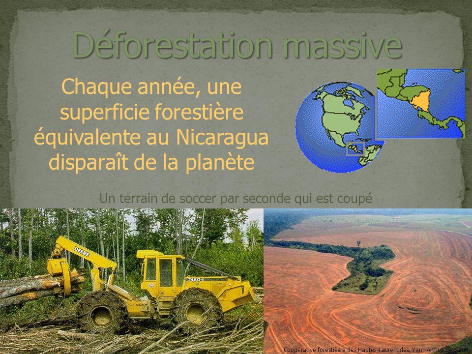 Chaque année, une superficie forestière équivalente au Nicaragua disparaît de la planète Coopérative forestièere des Hautes-Laurentides, Yann Arthus Bertrand Un terrain de soccer par seconde qui est coupé