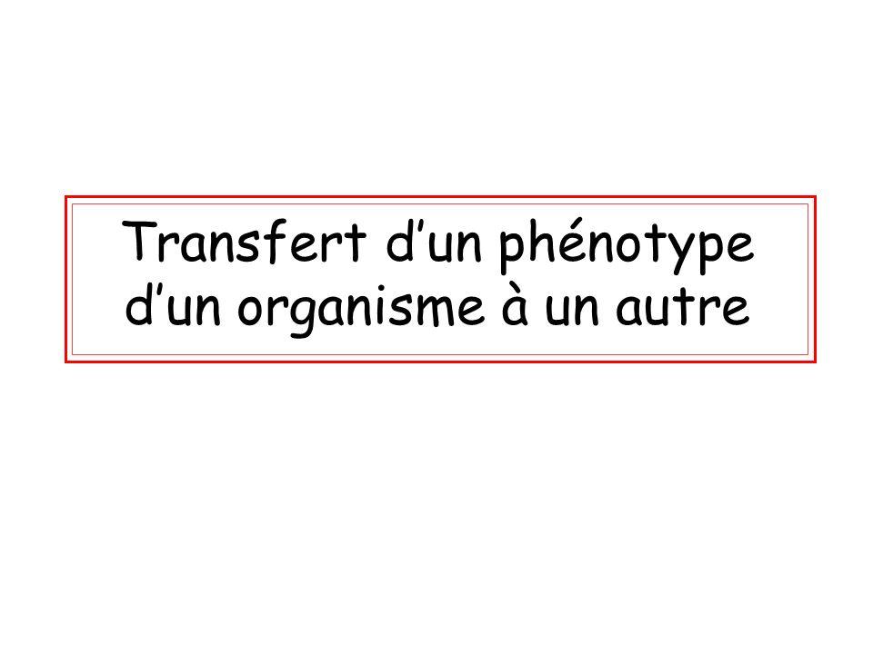 Transfert dun phénotype dun organisme à un autre