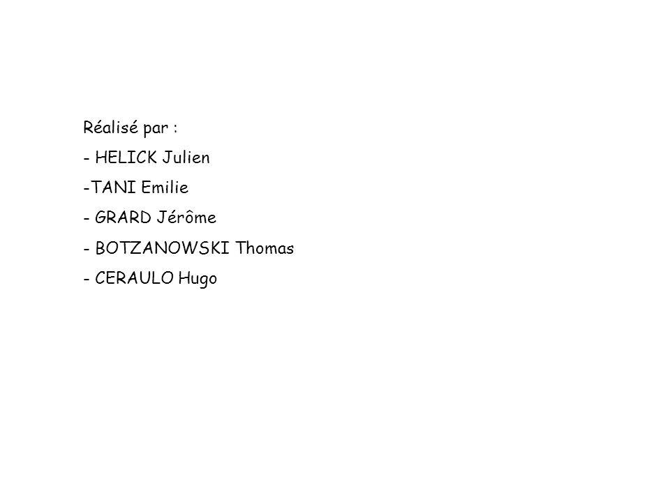 Réalisé par : - HELICK Julien -TANI Emilie - GRARD Jérôme - BOTZANOWSKI Thomas - CERAULO Hugo