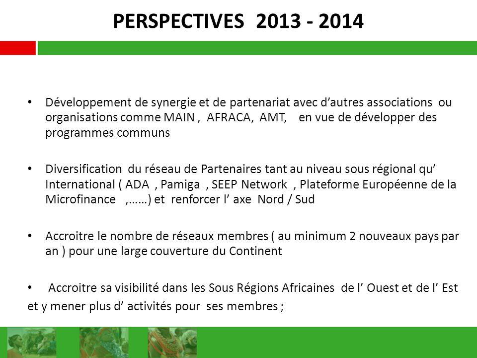 PERSPECTIVES 2013 - 2014 Développement de synergie et de partenariat avec dautres associations ou organisations comme MAIN, AFRACA, AMT, en vue de développer des programmes communs Diversification du réseau de Partenaires tant au niveau sous régional qu International ( ADA, Pamiga, SEEP Network, Plateforme Européenne de la Microfinance,……) et renforcer l axe Nord / Sud Accroitre le nombre de réseaux membres ( au minimum 2 nouveaux pays par an ) pour une large couverture du Continent Accroitre sa visibilité dans les Sous Régions Africaines de l Ouest et de l Est et y mener plus d activités pour ses membres ;
