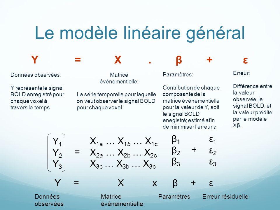 Le modèle linéaire général À vos ordinateurs !!!