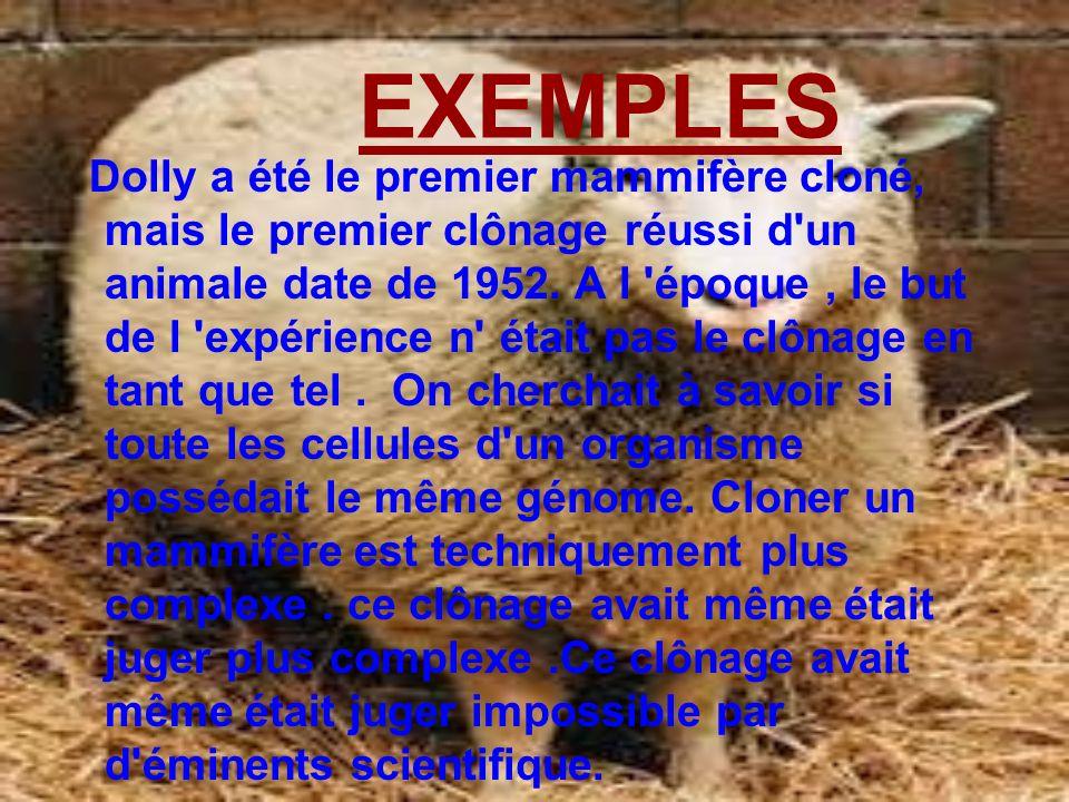 EXEMPLES Dolly a été le premier mammifère cloné, mais le premier clônage réussi d'un animale date de 1952. A l 'époque, le but de l 'expérience n' éta