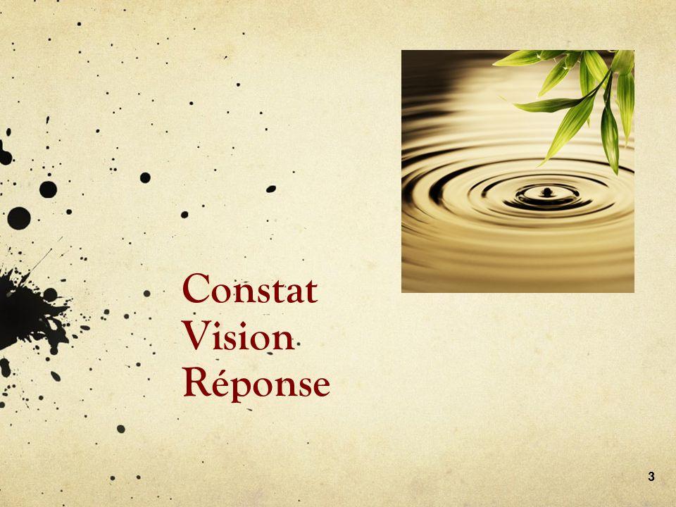 Constat Vision Réponse 3