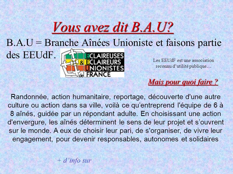 Vous avez dit B.A.U? B.A.U = Branche Aînées Unioniste et faisons partie des EEUdF. Mais pour quoi faire ? Randonnée, action humanitaire, reportage, dé
