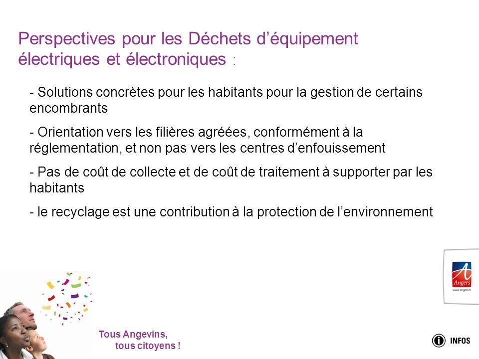 Tous Angevins, tous citoyens ! Perspectives pour les Déchets déquipement électriques et électroniques : - Solutions concrètes pour les habitants pour