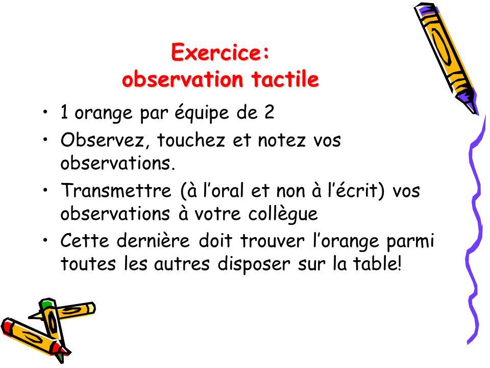 Exercice: observation tactile 1 orange par équipe de 2 Observez, touchez et notez vos observations.