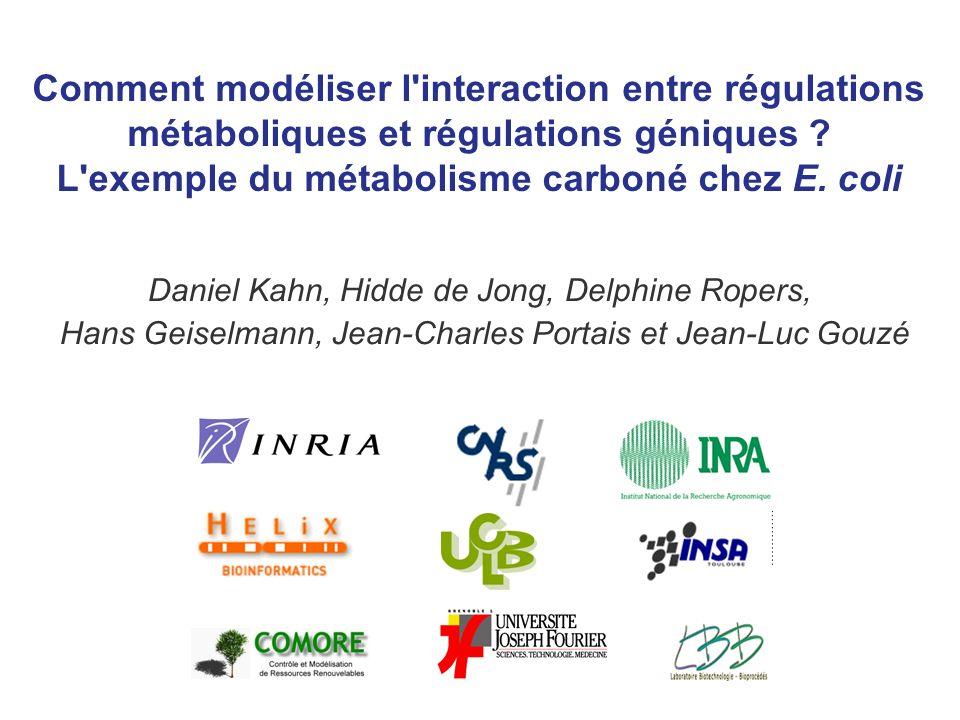 Comment modéliser l interaction entre régulations métaboliques et régulations géniques .