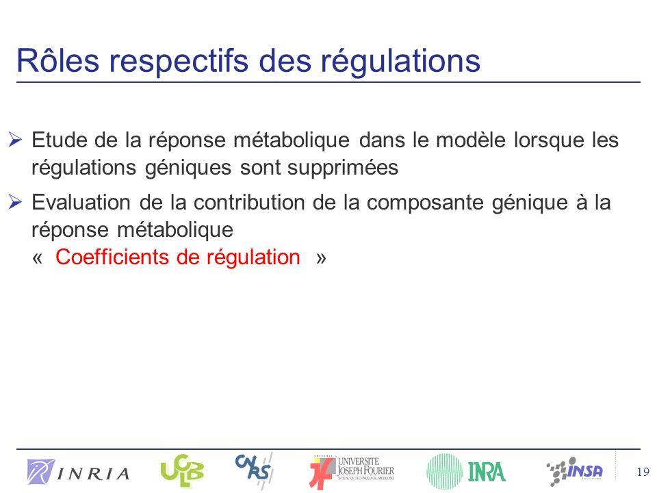 19 Rôles respectifs des régulations Etude de la réponse métabolique dans le modèle lorsque les régulations géniques sont supprimées Evaluation de la contribution de la composante génique à la réponse métabolique « Coefficients de régulation »