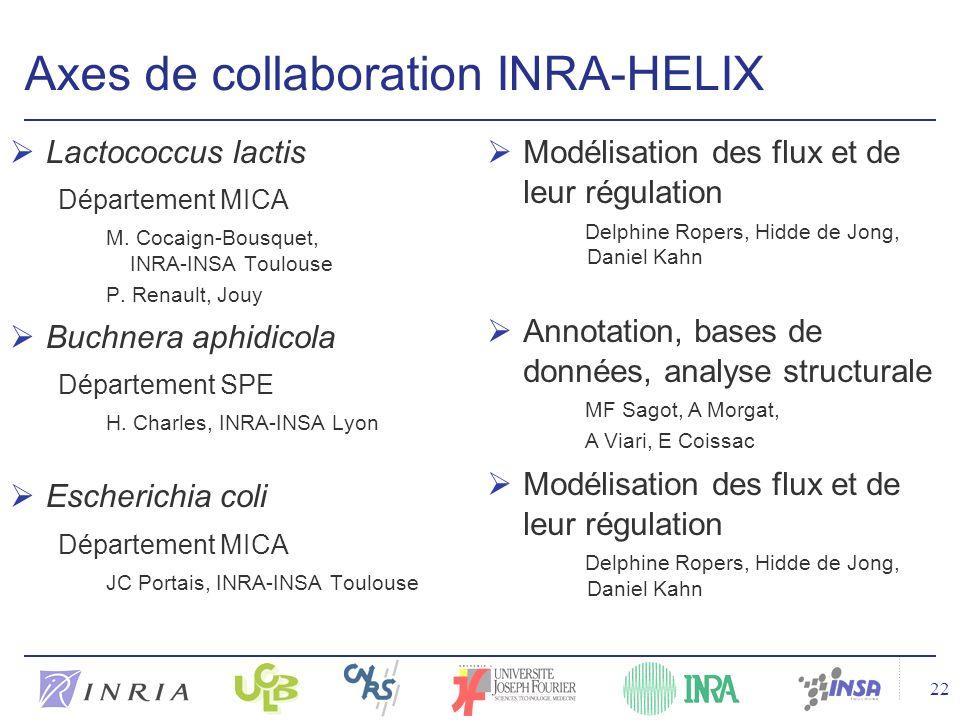 22 Axes de collaboration INRA-HELIX Lactococcus lactis Département MICA M.