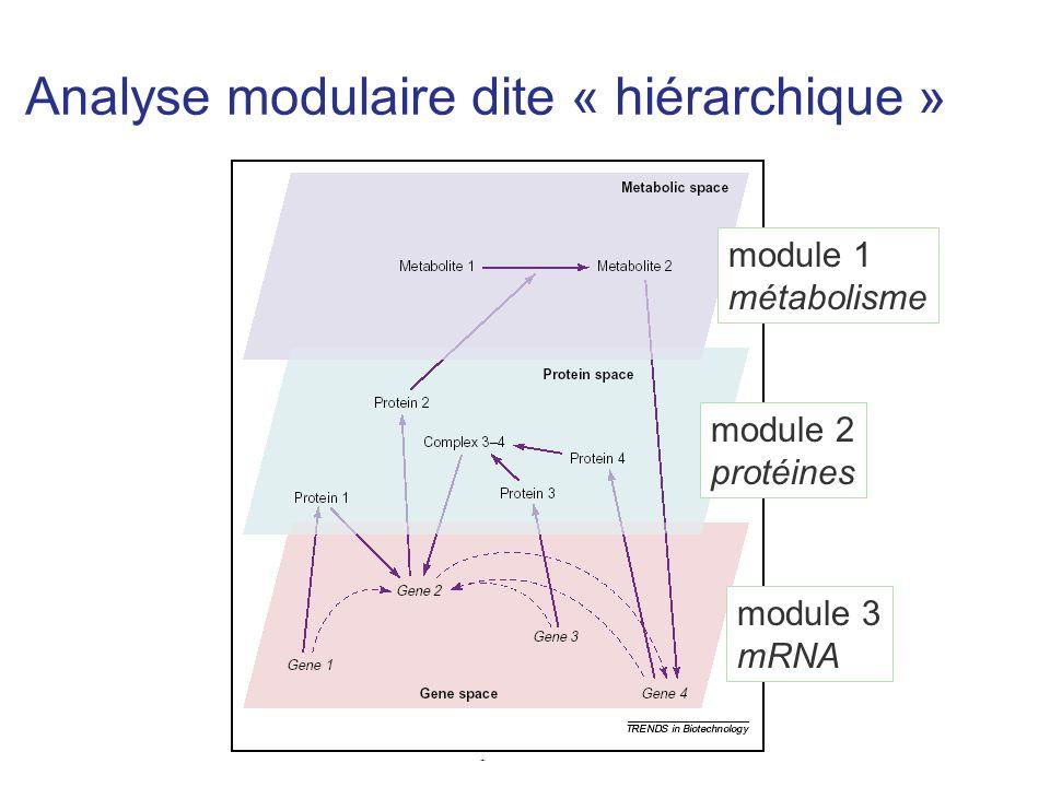 Analyse modulaire dite « hiérarchique » module 1 métabolisme module 2 protéines module 3 mRNA