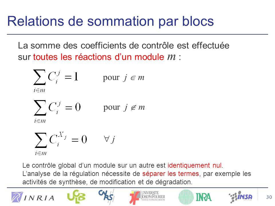 30 Relations de sommation par blocs La somme des coefficients de contrôle est effectuée sur toutes les réactions dun module m : pour j m j Le contrôle global dun module sur un autre est identiquement nul.