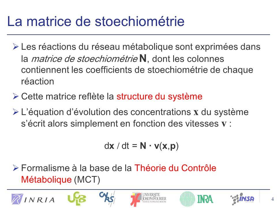 4 La matrice de stoechiométrie Les réactions du réseau métabolique sont exprimées dans la matrice de stoechiométrie N, dont les colonnes contiennent les coefficients de stoechiométrie de chaque réaction Cette matrice reflète la structure du système Léquation dévolution des concentrations x du système sécrit alors simplement en fonction des vitesses v : Formalisme à la base de la Théorie du Contrôle Métabolique (MCT) dx / dt = N · v(x,p)