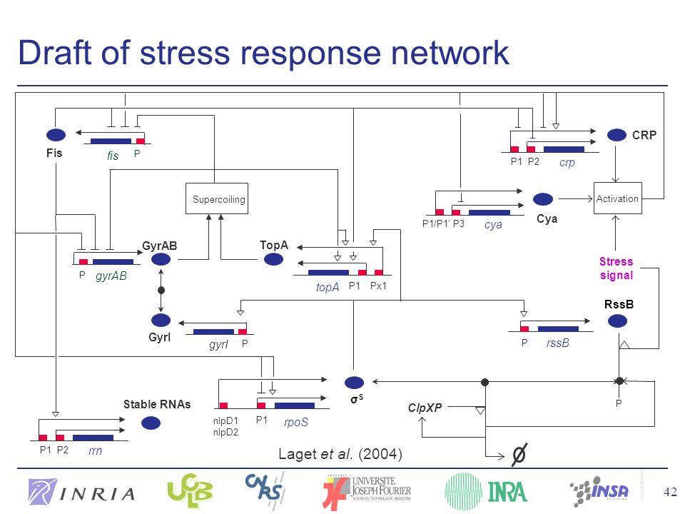 42 Draft of stress response network Laget et al. (2004)