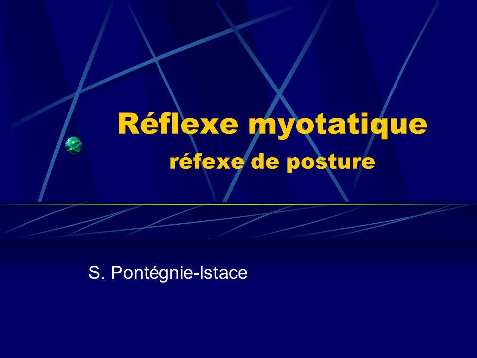 Réflexe myotatique réfexe de posture S. Pontégnie-Istace