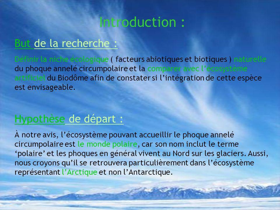 Introduction : But de la recherche : Définir la niche écologique ( facteurs abiotiques et biotiques ) naturelle du phoque annelé circumpolaire et la c