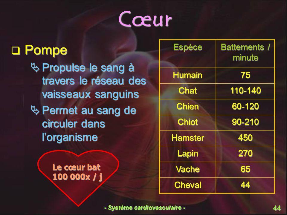 - Système cardiovasculaire - 44 Cœur Pompe Pompe Propulse le sang à travers le réseau des vaisseaux sanguins Propulse le sang à travers le réseau des