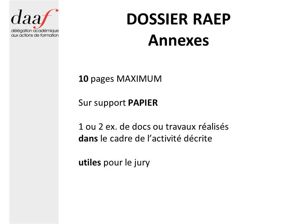DOSSIER RAEP Annexes 10 pages MAXIMUM Sur support PAPIER 1 ou 2 ex. de docs ou travaux réalisés dans le cadre de lactivité décrite utiles pour le jury