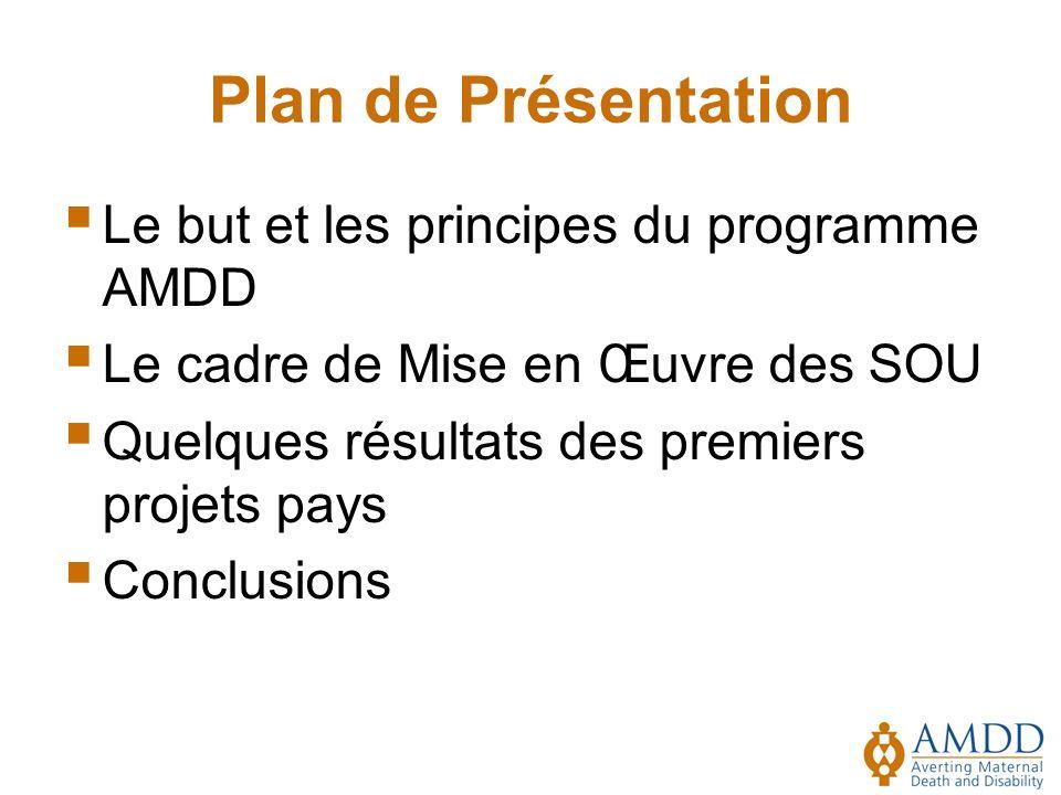 Plan de Présentation Le but et les principes du programme AMDD Le cadre de Mise en Œuvre des SOU Quelques résultats des premiers projets pays Conclusions