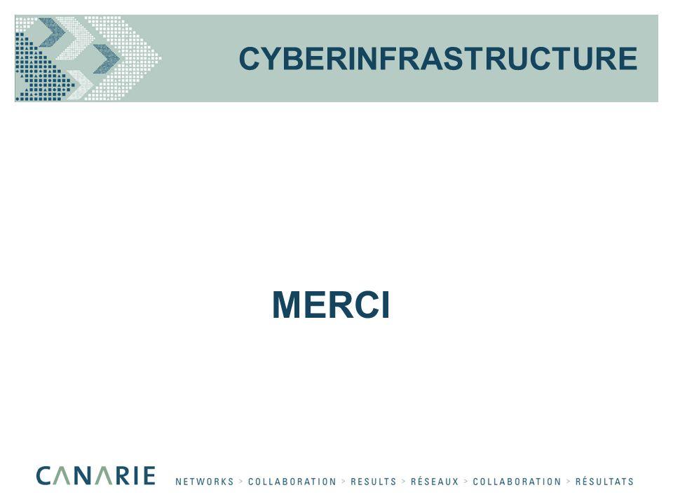 CYBERINFRASTRUCTURE MERCI