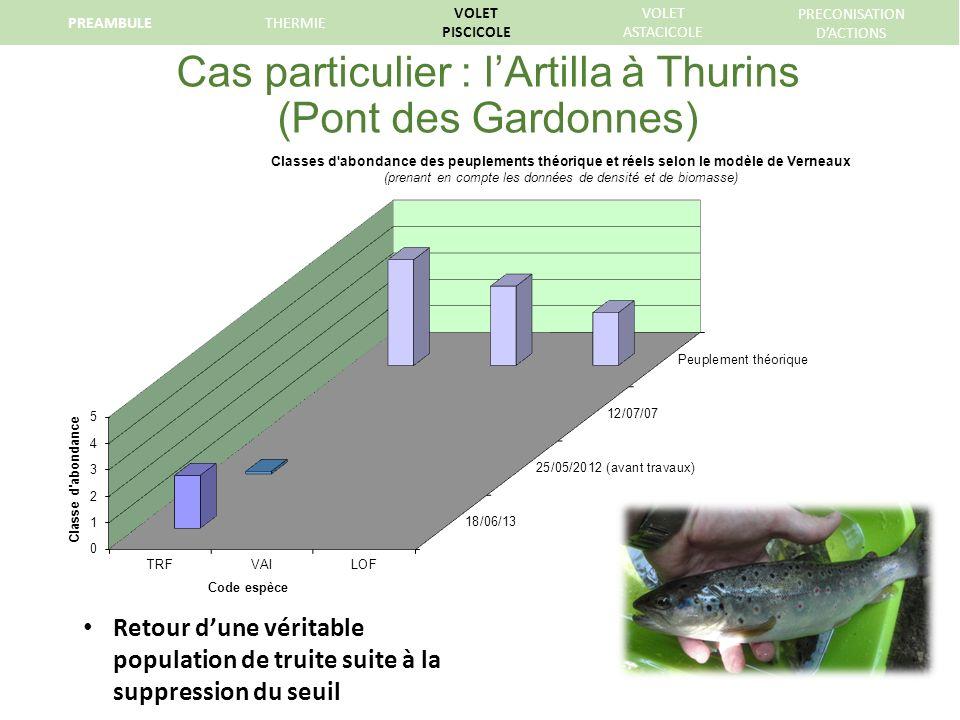 Cas particulier : lArtilla à Thurins (Pont des Gardonnes) Retour dune véritable population de truite suite à la suppression du seuil PREAMBULETHERMIE VOLET PISCICOLE VOLET ASTACICOLE PRECONISATION DACTIONS