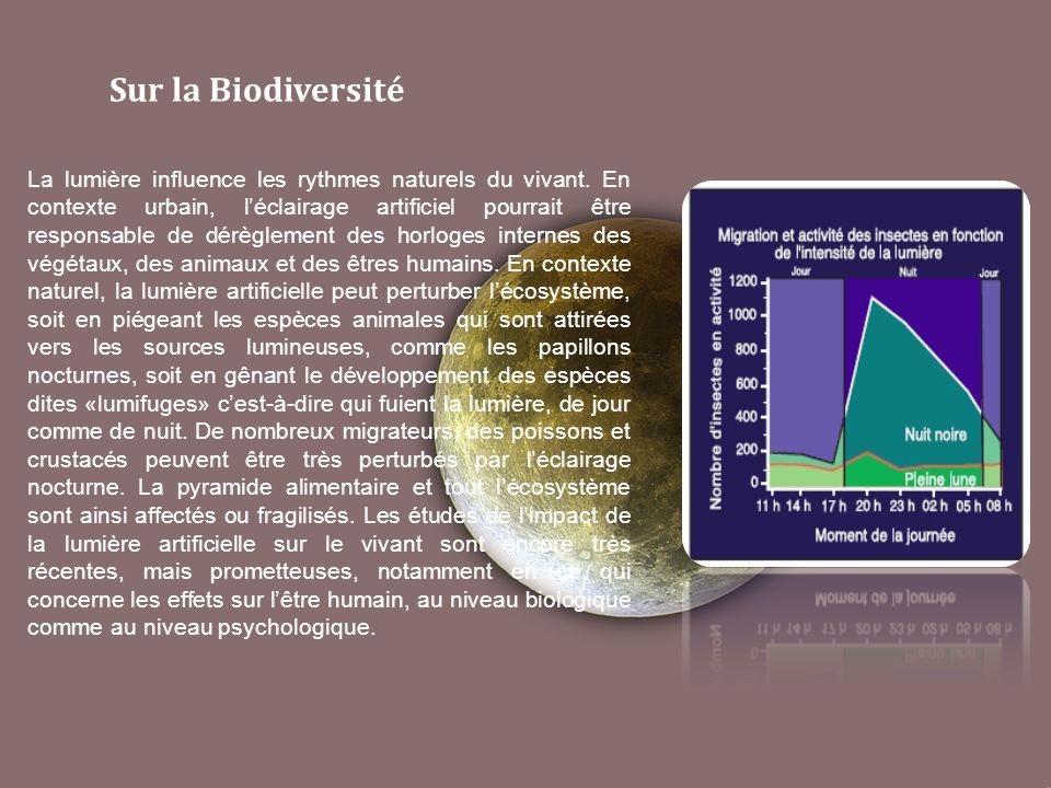 Sur la Biodiversité La lumière influence les rythmes naturels du vivant.