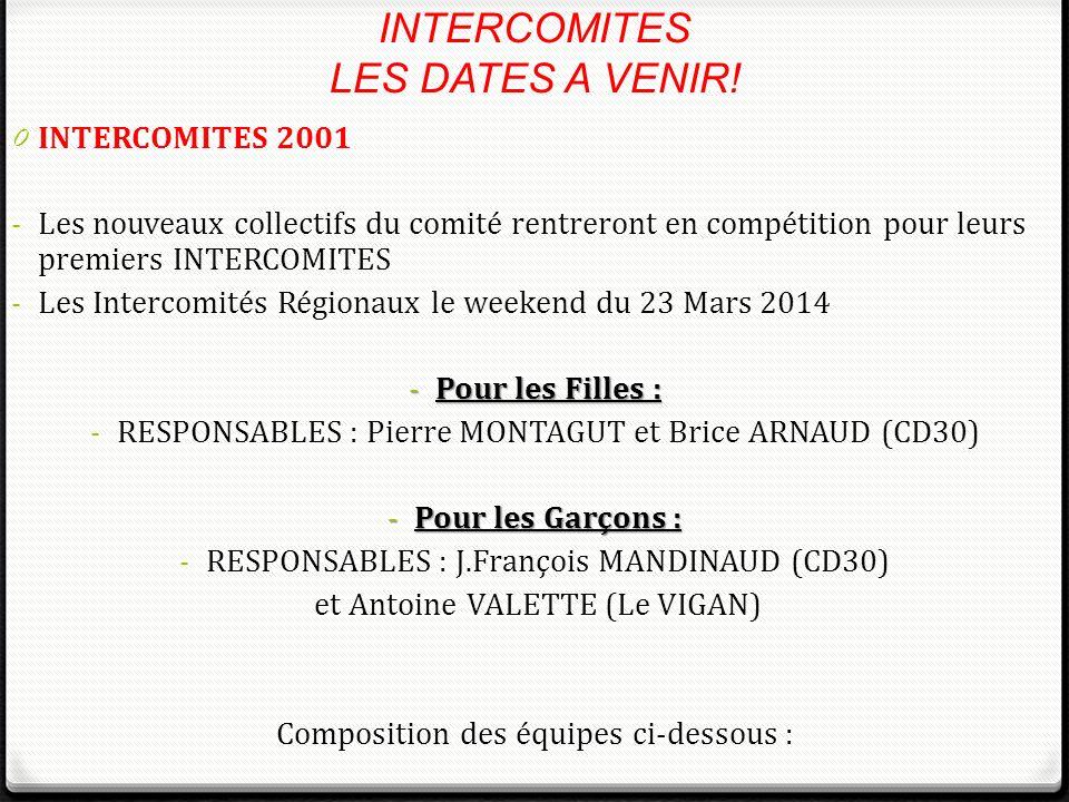 0 INTERCOMITES 2001 - Les nouveaux collectifs du comité rentreront en compétition pour leurs premiers INTERCOMITES - Les Intercomités Régionaux le wee